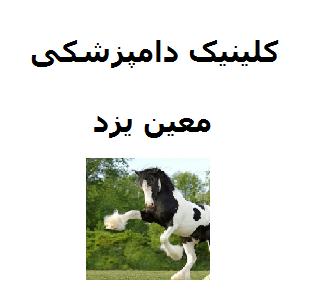 تصویر از کلینیک دامپزشکی معین یزد