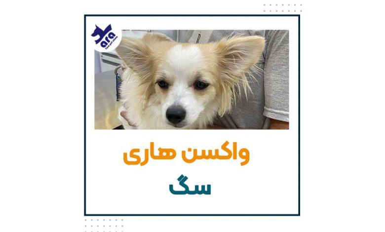 واکسن هاری سگ