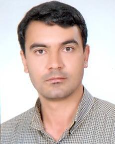 پانسیون سگ شیراز