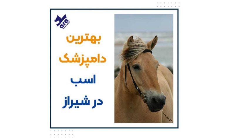 بهترین دامپزشک اسب شیراز