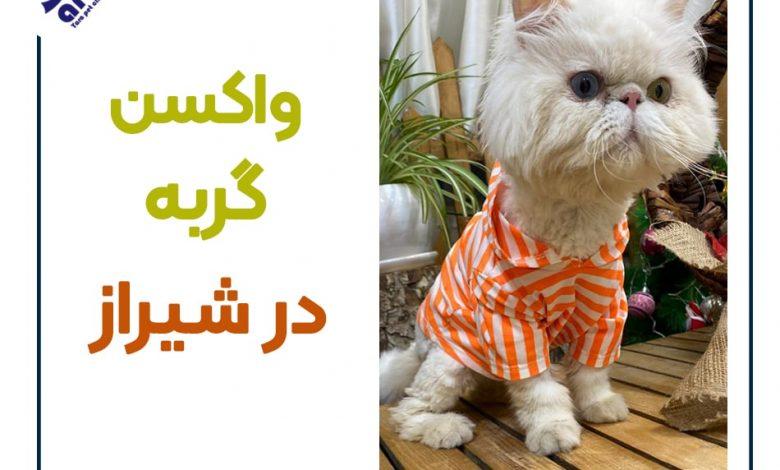 واکسن گربه در شیراز