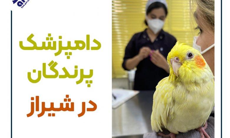 دامپزشک پرندگان در شیراز