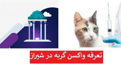 تصویر از واکسیناسیون گربه در شیراز ۲۳۰ هزارتومان (۳ گانه + هاری ۹۰هزارتومان)