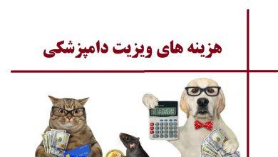 تصویر از لیست کامل هزینه ویزیت دامپزشکی ۱۴۰۰ : تعرفه دامپزشکی حیوانات خانگی