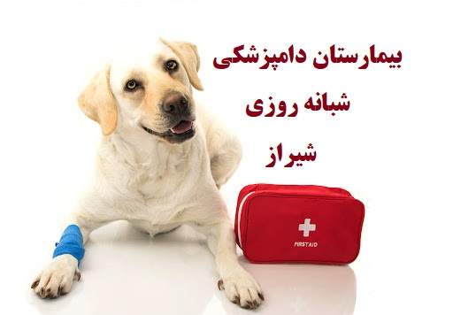 بیمارستان دامپزشکی شبانه روزی شیراز